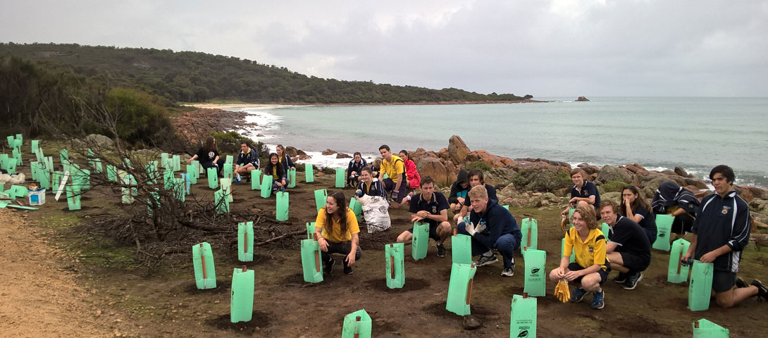 Busselton Senior High School students participating in a planting day