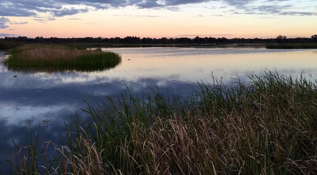 Metropolitan Region Scheme (Beeliar Wetlands) Bill 2021 to protect Beeliar Wetlands